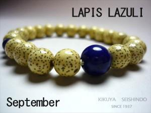 9-LAPIS-LAZULI