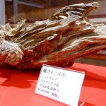 yanaka_incense_museum_page_image_09
